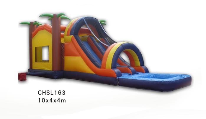 CHSL163